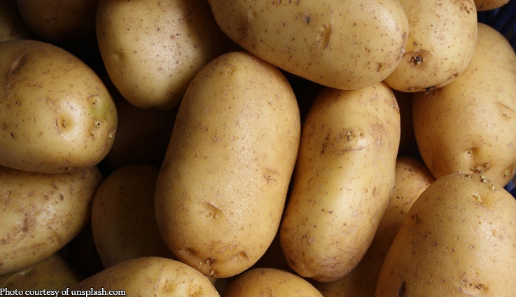 Gokongwei ties up with DA to boost potato output in Davao