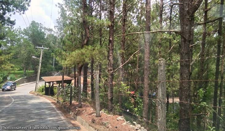 Baguio residents ask Duterte to stop Moldex from cutting down trees