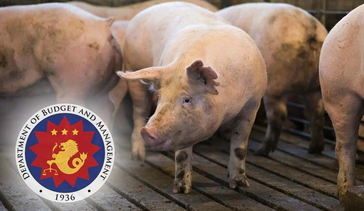 To the rescue! DBM releases P82M to combat swine fever